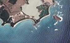 Les Salines: plages et tortues en Martinique